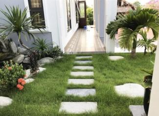 Con trai xây nhà vườn bên đồng lúa xanh mát tặng bố mẹ an hưởng tuổi già ở Vĩnh Phúc