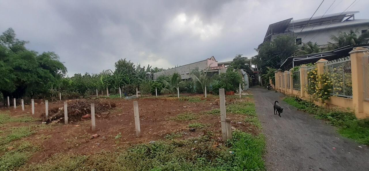 Cần bán lô đất ngộp, giá cho nhà đầu tư, cách vòng xoay TT Đất Đỏ 100m