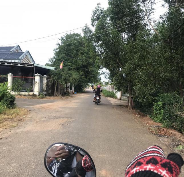 Bán đất mùa Covid 19 tại đường QL 55, thị trấn Đất Đỏ, huyện Đất Đỏ.