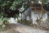 Cho thuê nhà nguyên căn đường Võ Duy Ninh, phường Long Toàn, Tp. Bà Ria.