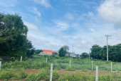 Bán lô đất mặt tiền nhựa 36m Võ Văn Kiệt - Phước Hội - Đất Đỏ - BRVT