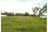 Cho thuê 720 m2 đất mặt tiền đường Ba Cu, phường 3, Thành Phố vũng Tàu.