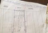 Cần bán gấp 4200m2 đất 2 mặt tiền đường Quốc Lộ 51, phường Tân Phước, thị xã Phú Mỹ.
